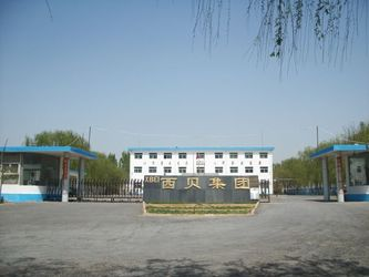 Henan Xibei Latex Co.Ltd.